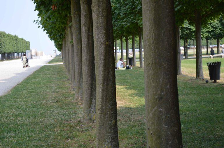 Jardin à la française 2