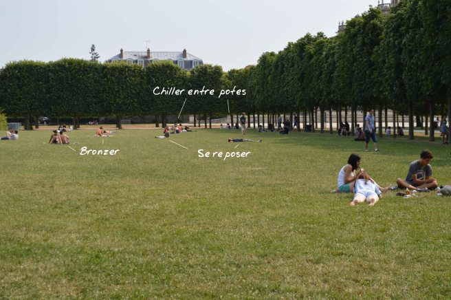 Jardin_activités