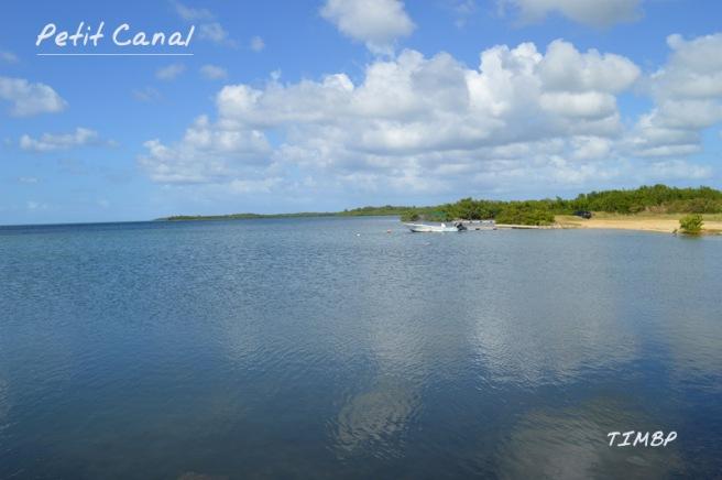 Petit Canal - Mangrove
