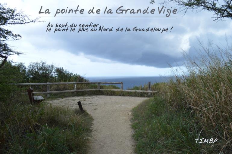Pointe de la Grande Vigie1