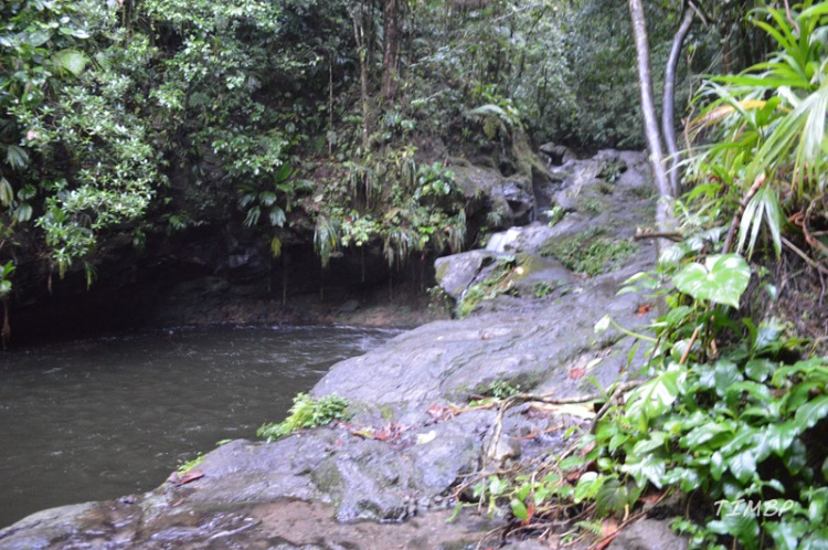 Rivière paradise4