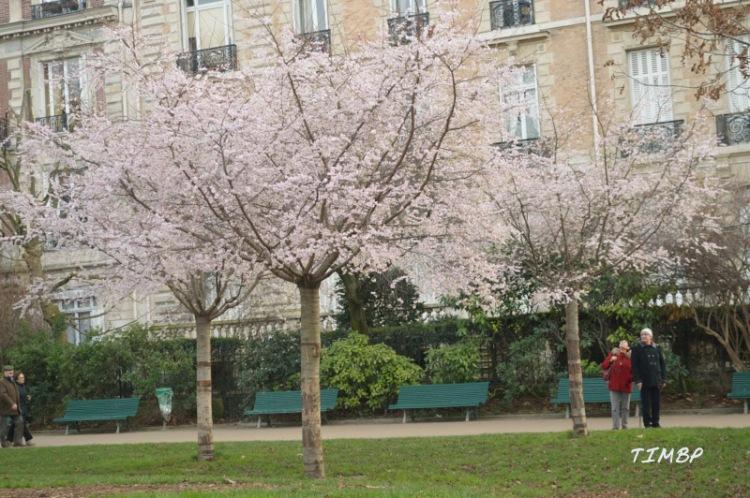 Parc Monceau4