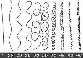 types-de-cheveux