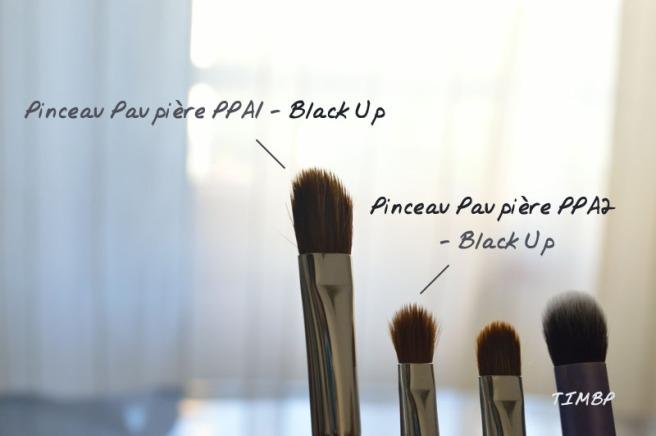 Fav_Pinceaux_pp1ppa2