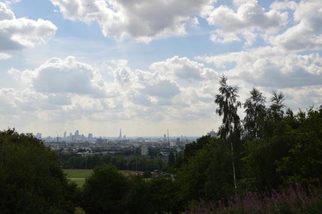 hampstead-heath-summer-2015-parliament-hill (6)