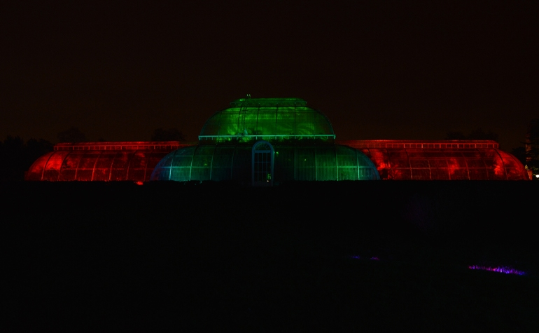 Christmas-at-kew-January-2015 (5) copy