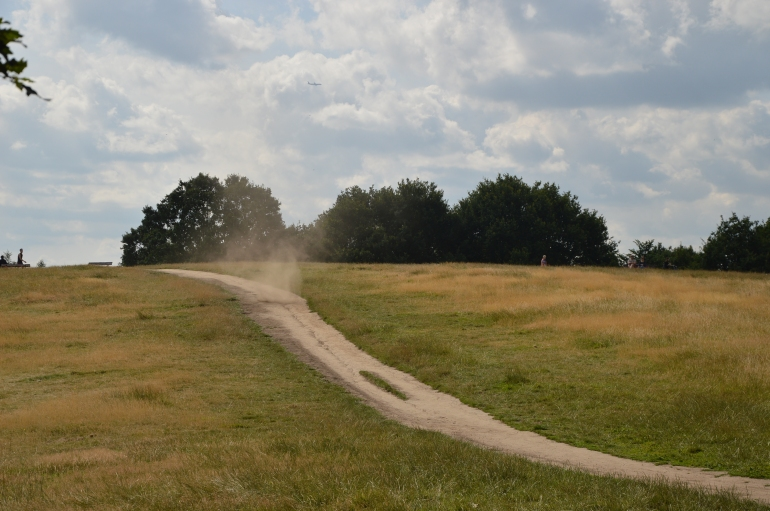 hampstead-heath-summer-2015 (15)