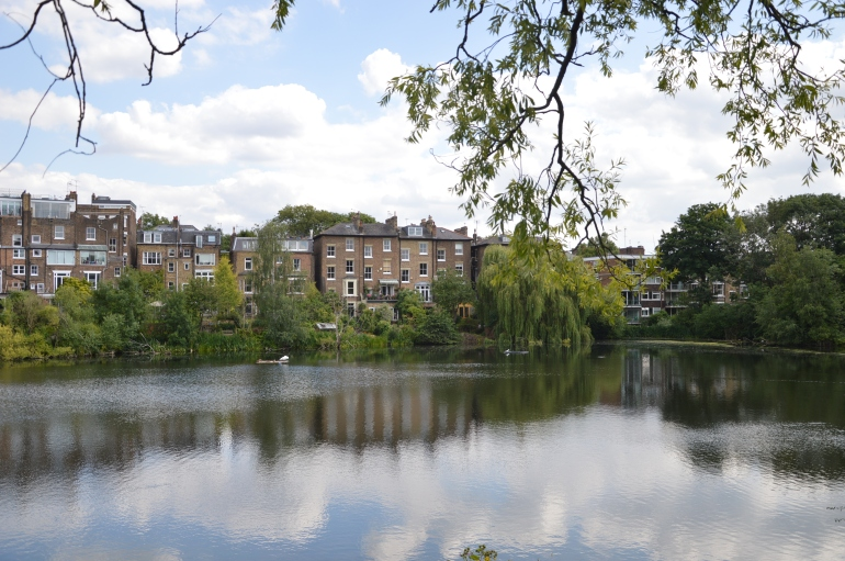 hampstead-heath-summer-2015 (79)